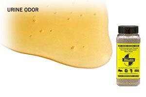 Does Vinegar Remove Urine Odor