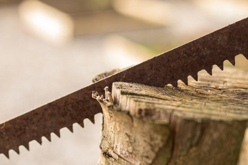 Dovetail Saw Wood