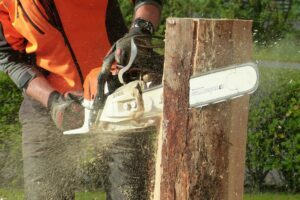 Chainsaw Kickback Reasons And Safety Tips